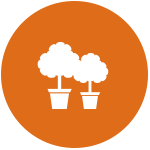picto plantation