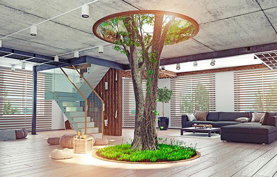 arbre interieur - paysages intérieurs